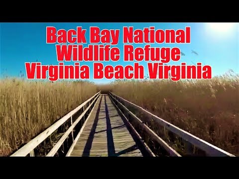 Back Bay National Wildlife Refuge (Virginia Beach, VA.)