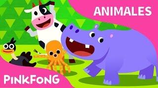 Muévete Como los Animales | Animales | PINKFONG Canciones Infantiles