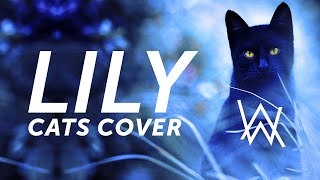 Download Cats and Dogs Sing Lily Alan Walker