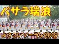 『 バサラ瑞浪 』 in よさこいソーラン 2019.6.8 at 大通り西8丁目