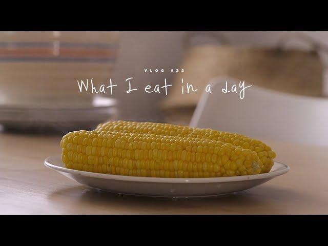 [SUB] VLOG #22 하루세끼, 초당옥수수와 백숙 : What I eat in a day | Honeykki 꿀키
