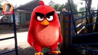 Benyamin S Ondel Ondel Versi Badut Anggry Birds Flimahdi 35