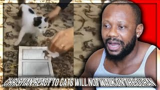 Christian React To Cats Will Not Walk on The Quran, experiment with 5 cats!!!