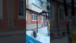 ул. Молодежная,53
