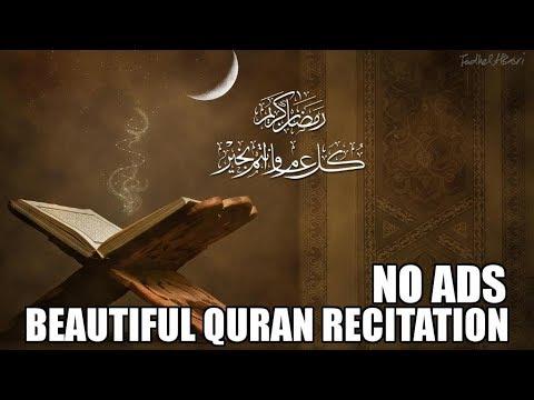 Beautiful Quran Recitation - 10 Hours   No Ads