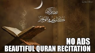 Beautiful Quran Recitation - 10 Hours | No Ads screenshot 3