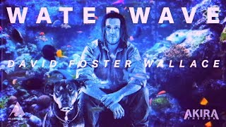 Akira The Don & David Foster Wallace - This is WATERWAVE D...