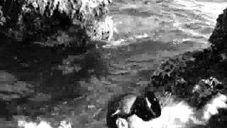 Водолазы / The Frogmen (1951)