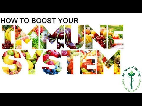 Best Immune System Booster
