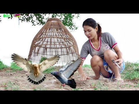 Creative Smart girl Best idea Quick Bird Trap & Easy Trap Bird Using Angrout Traditional Khmer