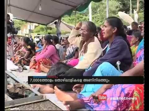 Munnar strike :Women employees today decision to take on Candidateship in Kerala local Body Election