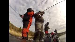 Trip pêche sur Mequinenza