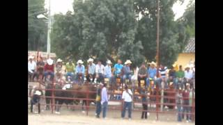 Huehuetlan el Chico, Puebla. Fiesta San Francisco de Sales 5 de Febrero 2012 (2)