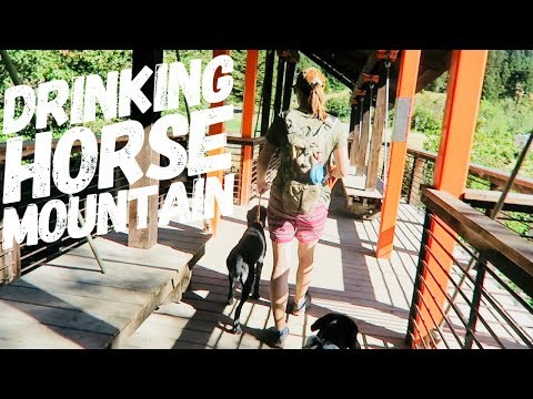 Drinking Horse Mountain Trail Bozeman, MT