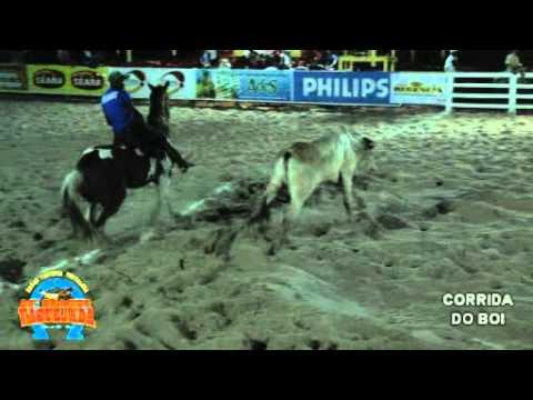 video de corrida de vaquejada