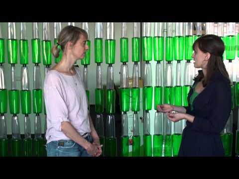 Nachgefragt! Interview mit Marie Schütz vonTerraCycle