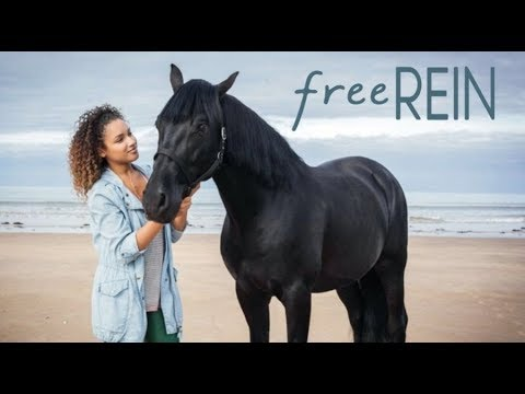 #free REIN/ Love Again song