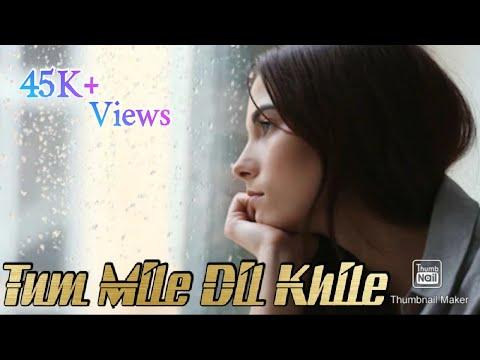 Tum Mile Dil Khile New Version