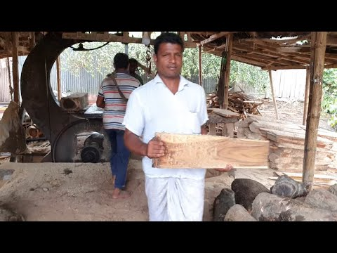 Buyer Accepting Wood After Cutting at Rural Sawmill।Fume and Dust Cannot Stop the Wood Workers