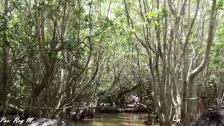 Parque ecológico El Corchito, Progreso, Yuc.