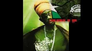 Sizzla - Thta's Y (Reggaeville Riddim)