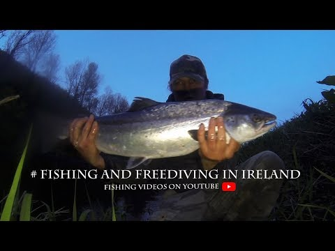 Salmon Fishing In Ireland - My Reel Was On Fire!
