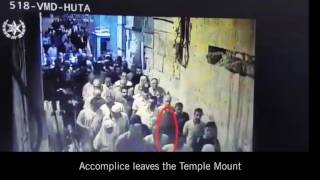 Police video shows how terrorists got their guns onto Temple Mount