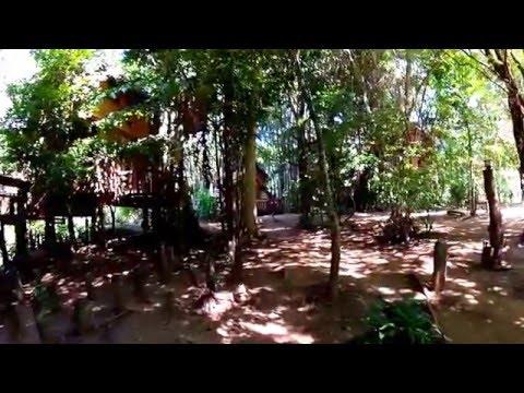 Rabeang Pasak Treehouse Resort Walk-Thru