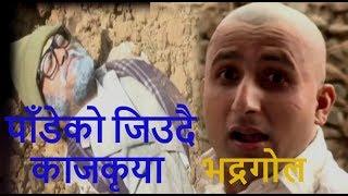पाँडेको जिउदै काजकृया !! Bhadragol, Comedy Compiation (भद्रगोल)