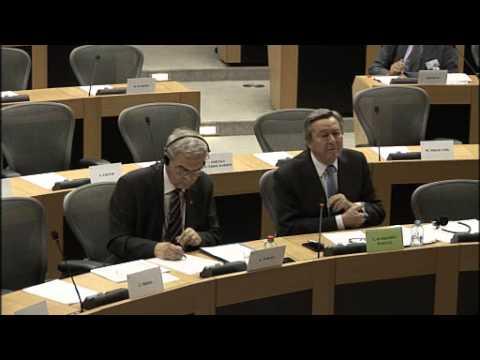 Venezuela / European Parliament, Subcommittee on Human Rights, 2015-06-16, Original audio