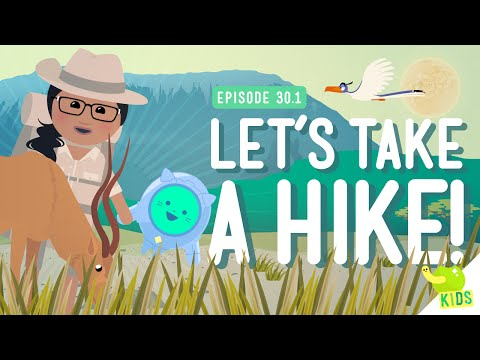 Let's Take a Hike: Crash Course Kids #30.1