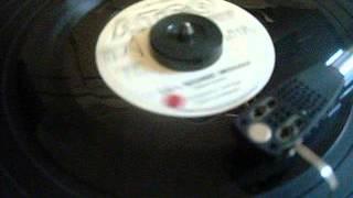 Stevie Layne T.D.