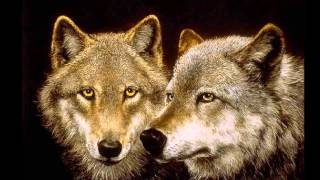native american lobos wolves  Indian music Sacred Spirit