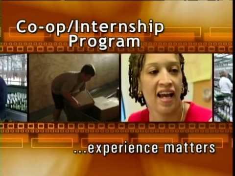 Cooperative Education/Internship Program