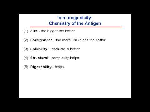 Antigens & Antibodies, part 1