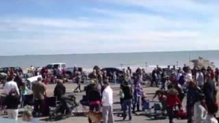 Pet Parade Galveston