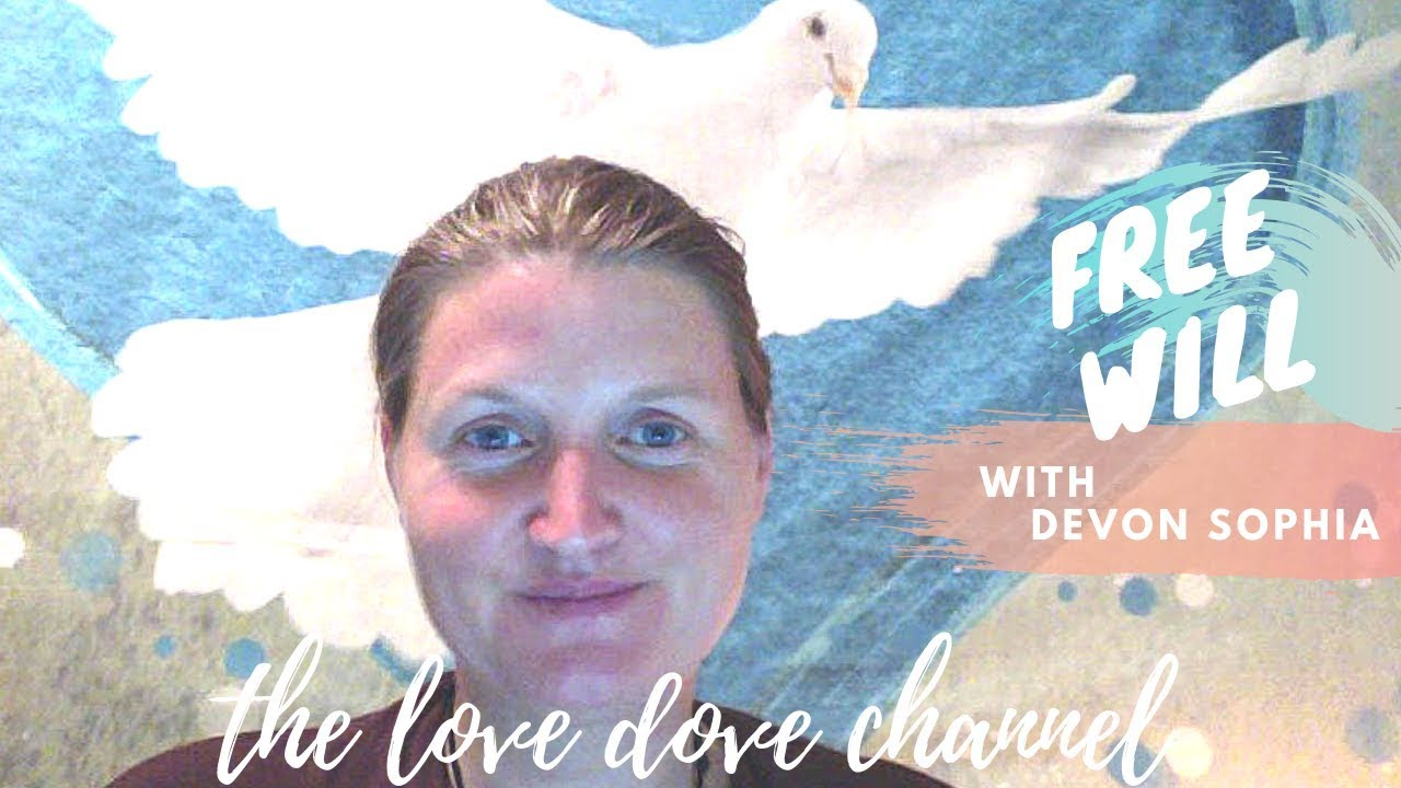 The Love Dove Channel A Message about Freewill