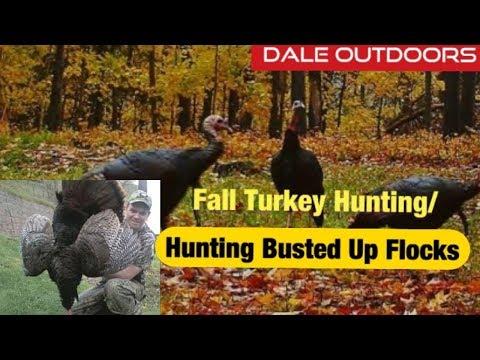 FALL TURKEY HUNTING / Turkey Hunting Busted Up Flocks