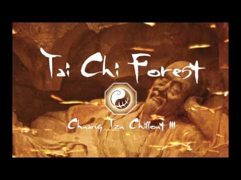 Music: Chuang Tzu Chillout III