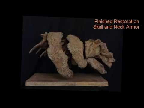 Newly Discovered  Grand Staircase Escalante Ankylosaur