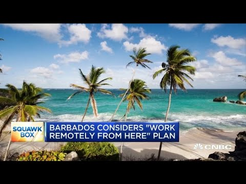 Barbados considers allowing visitors to work remotely from the island
