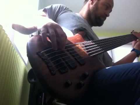 G. Love and Special Sauce | Give it to you Bass Cover |