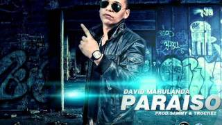 Paraiso - David Marulanda (PROD SAMMY,TROCHEZ) LP ALL STARS