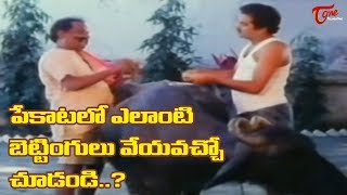 ఇలాంటి బెట్టింగ్ లను మీరు ఎప్పుడైనా చూశారా..?   Telugu Movie Comedy Scenes   TeluguOne