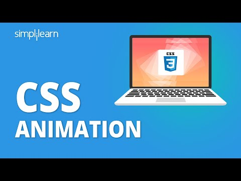 Everything You Need to Know About CSS Animation