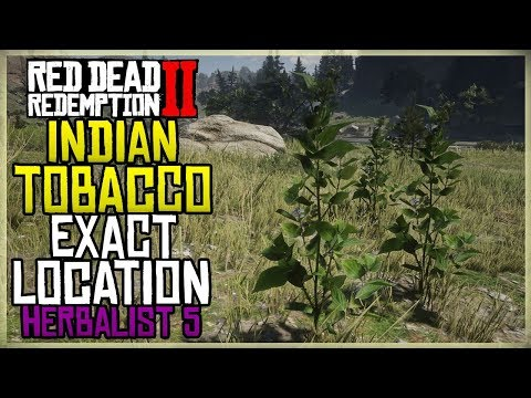 WHERE TO FIND INDIAN TOBACCO EXACT LOCATION - HERBALIST 5 - RED DEAD REDEMPTION 2