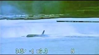 Video New footage of US Airways Plane Crash in the Hudson River. Airbus A320 Flight 1549 download MP3, 3GP, MP4, WEBM, AVI, FLV Juli 2018