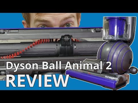 dyson-ball-animal-2-review