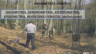 DASOMETRÍA, DENDROMETRÍA, ESTEREOMETRÍA, EPIDOMETRÍA (DEFINICIONES)