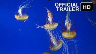 The Living Sea -  Official IMAX Trailer - HD music by Sting